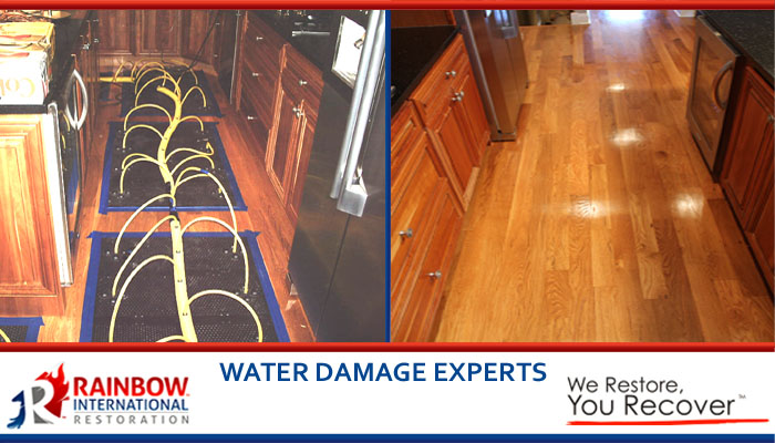 Experts in water damage restoration